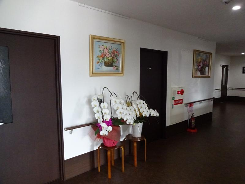 施設内廊下絵画展示