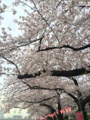 東墨田公園