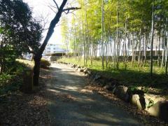 国分寺中央公園
