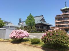 西本願寺福井別院(西御坊)