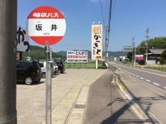 「坂井」バス停留所
