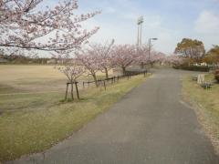楠緑地公園