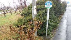 「稲荷台」バス停留所