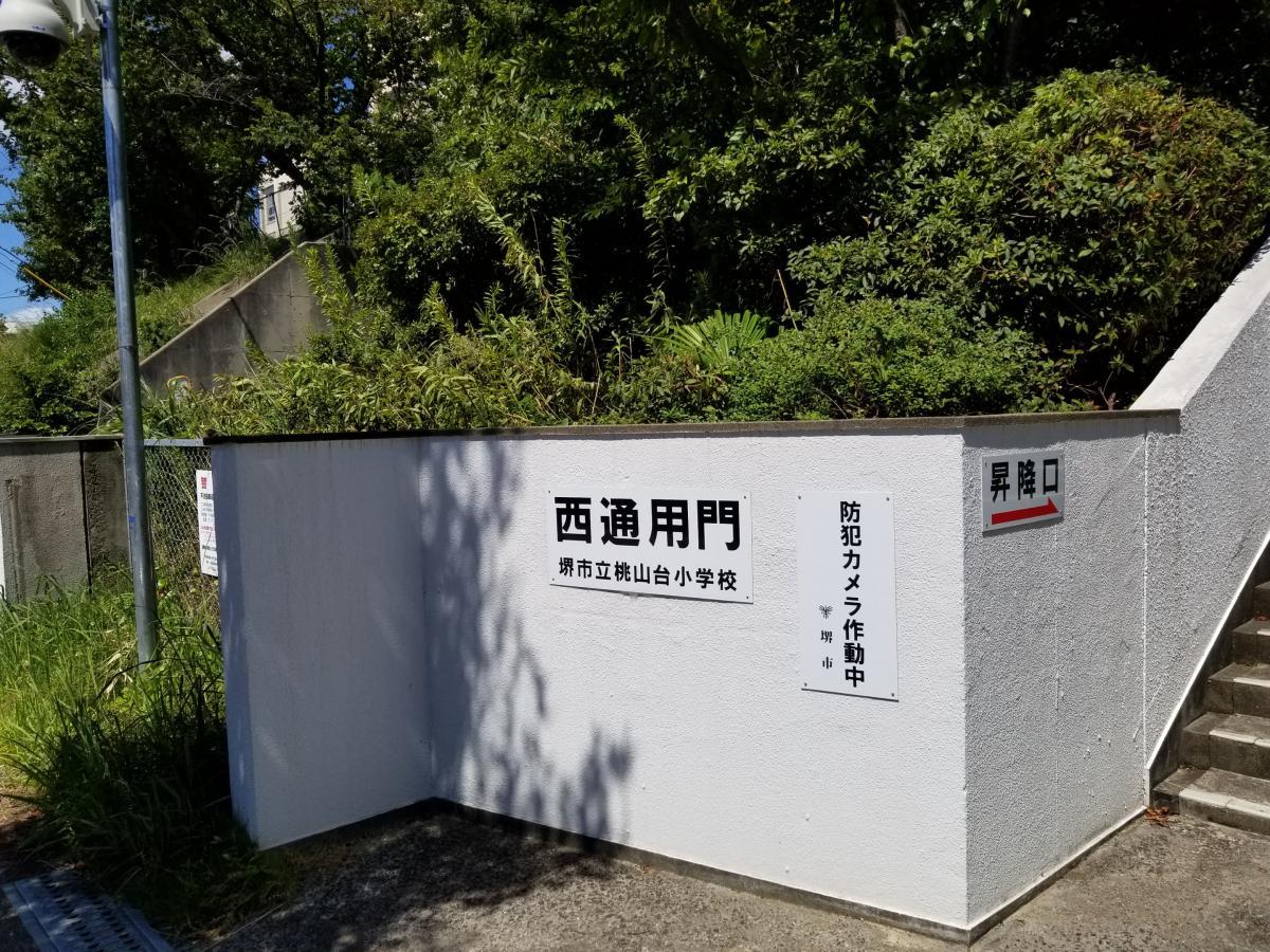 桃山台小学校_施設外観