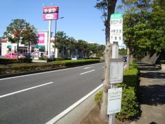 「芸術文化ホール前」バス停留所