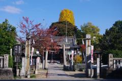 井手神社(松山の天神さん)