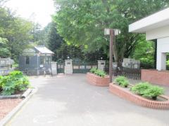 北海道大学北方生物圏フィールド科学センター植物園(北大植物園)