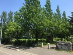 屯田ひがし公園
