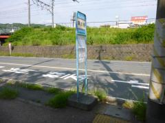 「早川港」バス停留所