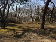 寺内古四王近隣公園
