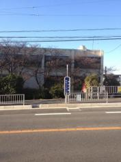 「津田本通」バス停留所