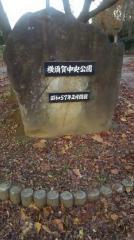 横須賀中央公園