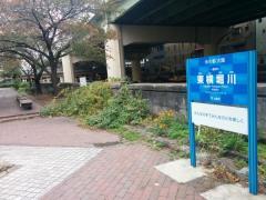 東横堀緑道