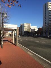 「国際センターサンパレス前」バス停留所