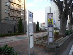 「表町」バス停留所