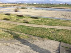 九頭竜川緑地