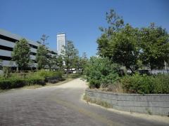 第12号りんくう羽倉崎北1号緑地