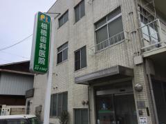 根橋歯科医院
