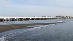 江の島大橋