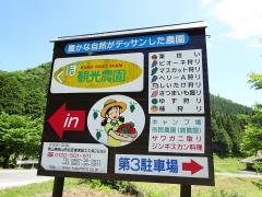 くぼ観光農園