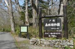 戸隠高原森林植物園