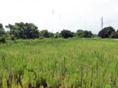杭瀬川公園