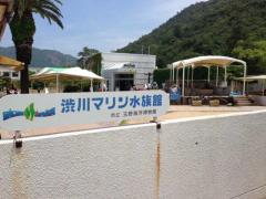玉野海洋博物館(渋川マリン水族館)