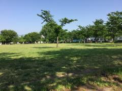 三本柳中央公園