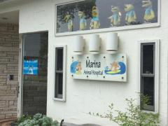 マリーナ動物病院