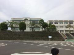 ふじのくに地球環境史ミュージアム