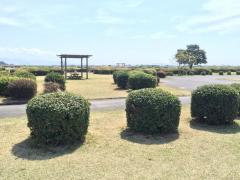 富士川緑地公園