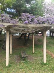 美濃町公園