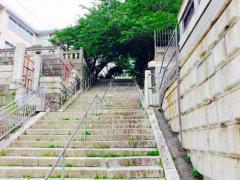 聖徳保育園_雰囲気