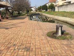 瀬戸川緑道