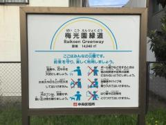 梅光園緑道