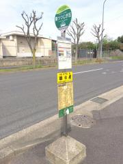 「南つつじが丘」バス停留所