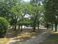 中島中央公園