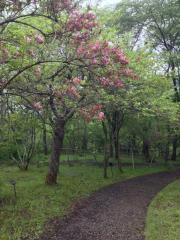 秋田市植物園