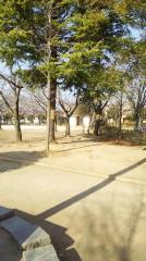 新松戸南公園