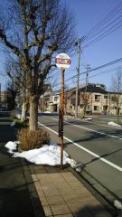 「左内公園口」バス停留所
