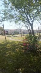 出川南公園