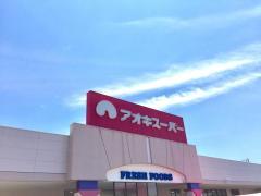 アオキスーパーニッケタウン稲沢店