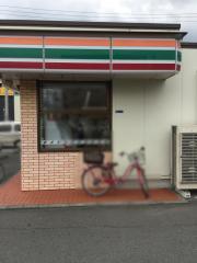 セブンイレブン平塚銀河大橋店