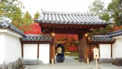 姫路城西御屋敷跡庭園好古園