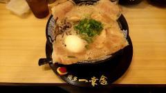 博多一幸舎京都店