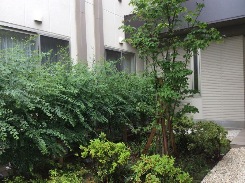 施設の外観と植栽