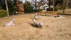 くちなし公園