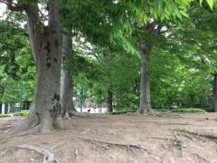 あさひ公園