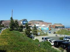 アクアワールド茨城県大洗水族館