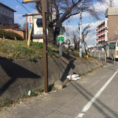 「森ケ山」バス停留所